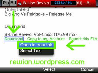 Cara Mudah Download di Plunder